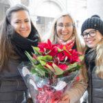 Stelle di Natale 2015 Torino